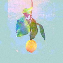 米津玄師 「Lemon」